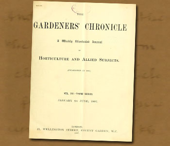 Gardeners Chronicle 1897